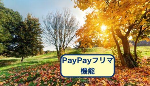 PayPayフリマの機能の使い方を3分で解説します!